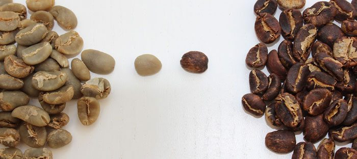Arabica-Robusta-Coffee