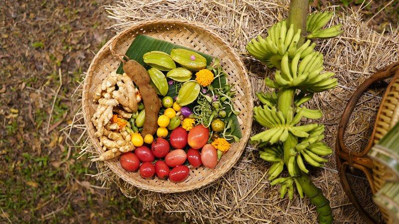 Banyan-tree-phuket-tre-Organic-Produce-1